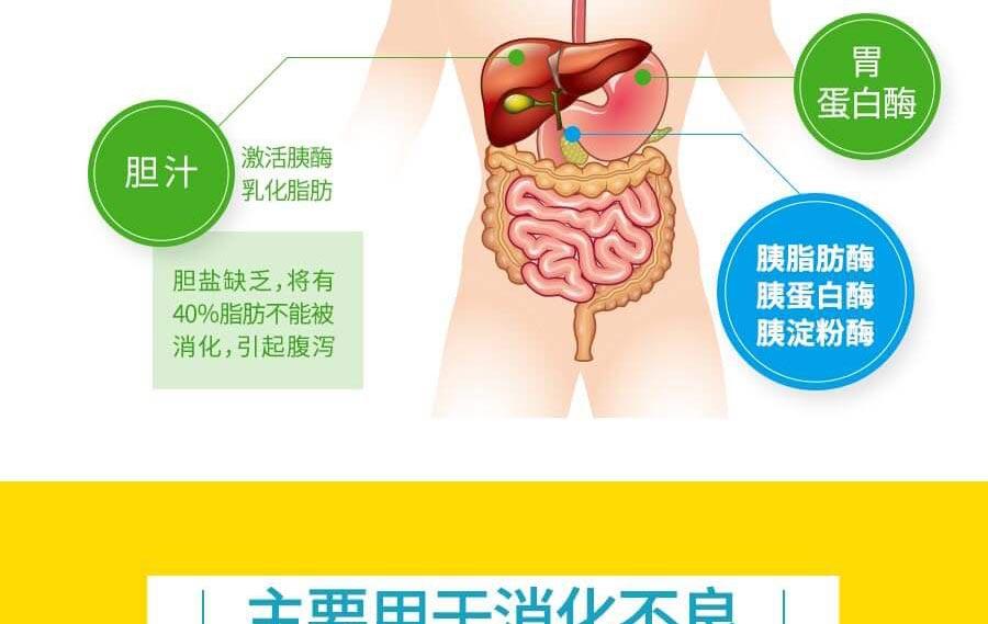 得每通 胰酶肠溶胶囊(得每通) 0.15g*20s R