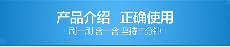 云南白药 云南白药牙膏(留兰香) 90g